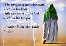 The tongue of the wise man is behind his heart, and the heart of the fool is behind his tongue.